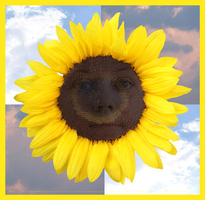 sunflowervlg's Profile Picture