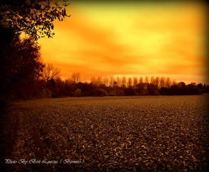 Landscape in Sepia. by Bermiro