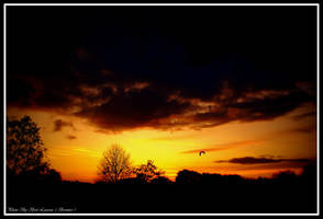 Autumn sunset. 01 by Bermiro