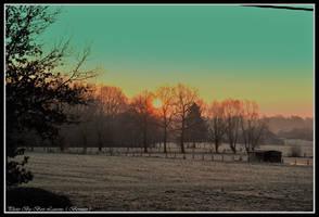 The sun radiates in the morning. by Bermiro