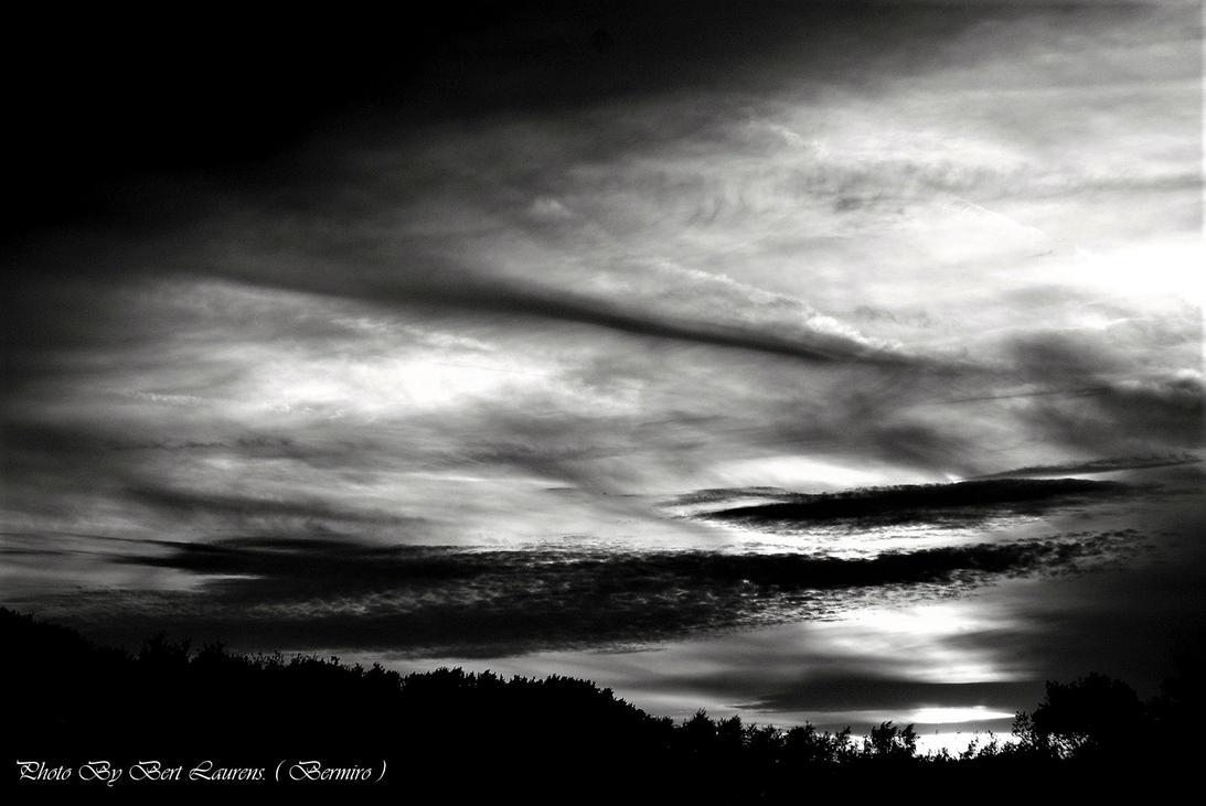 Nightmare black in white. by Bermiro