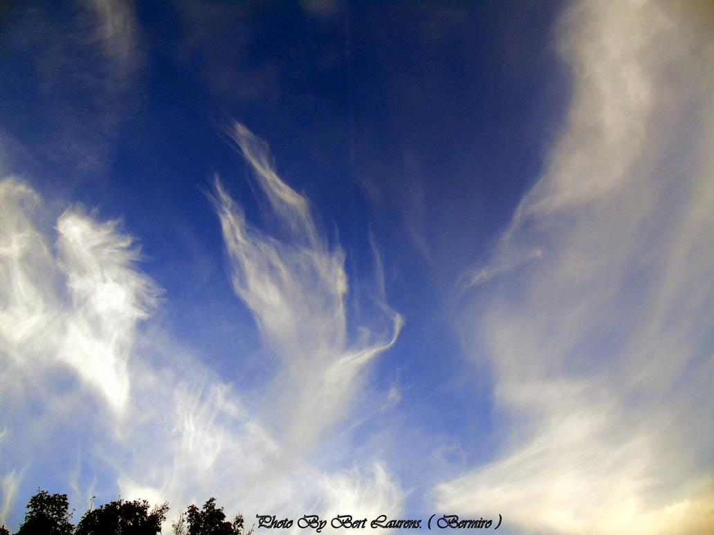 Strangely drawn clouds.