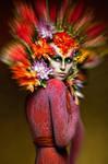 Phoenix by divafrida