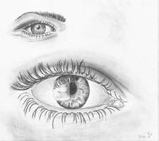 Eyes practice by Hupie