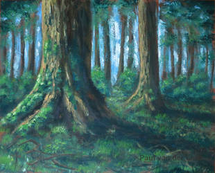 Forest painting by Hupie