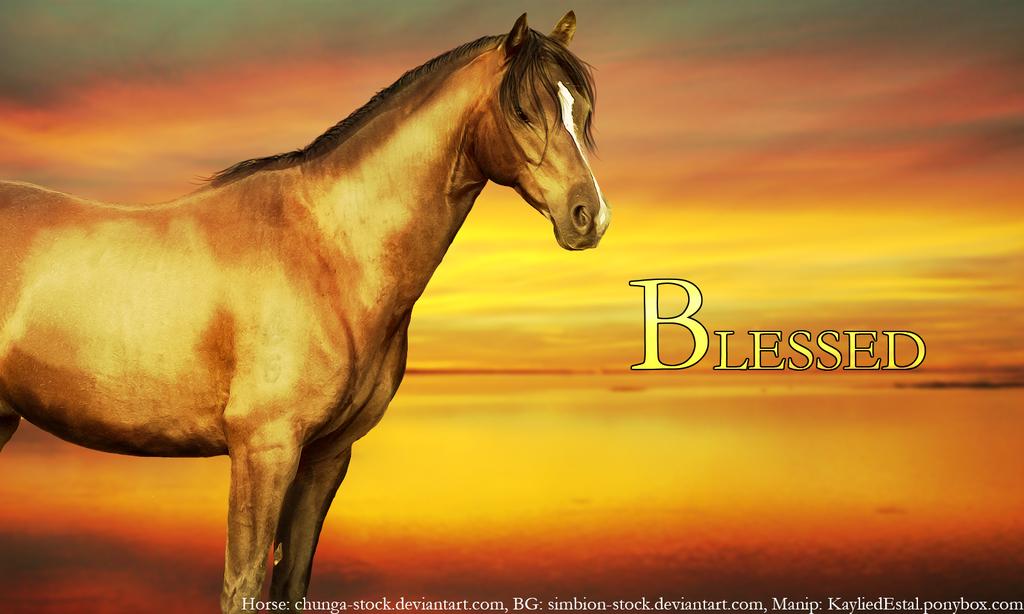 Blessed by Kaylied-Estal