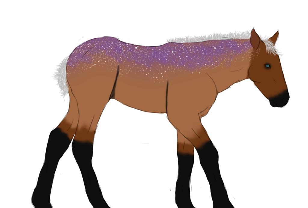 Corinna as a foal by Kaylied-Estal