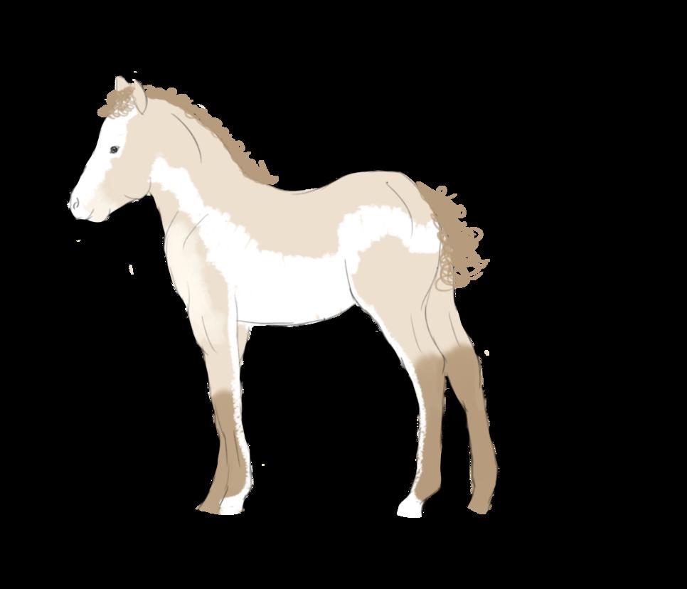 Silverwind as a foal by Kaylied-Estal