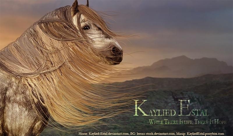 Kaylied Estal by Kaylied-Estal