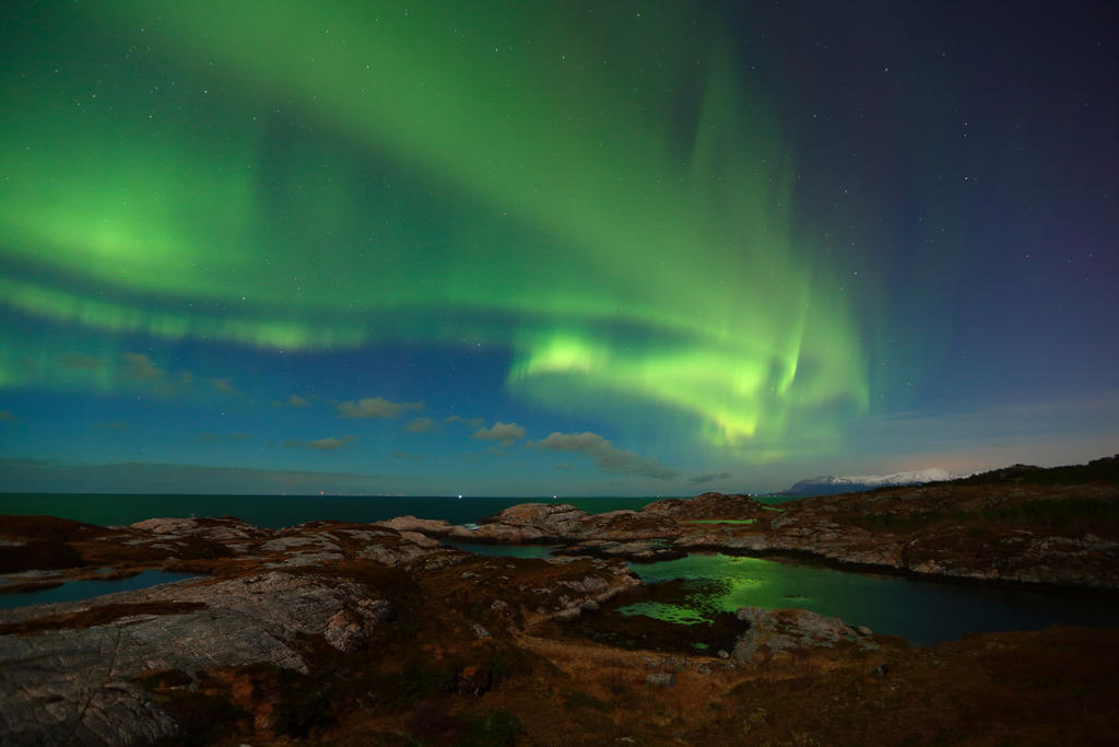 The green spectacle by janernn