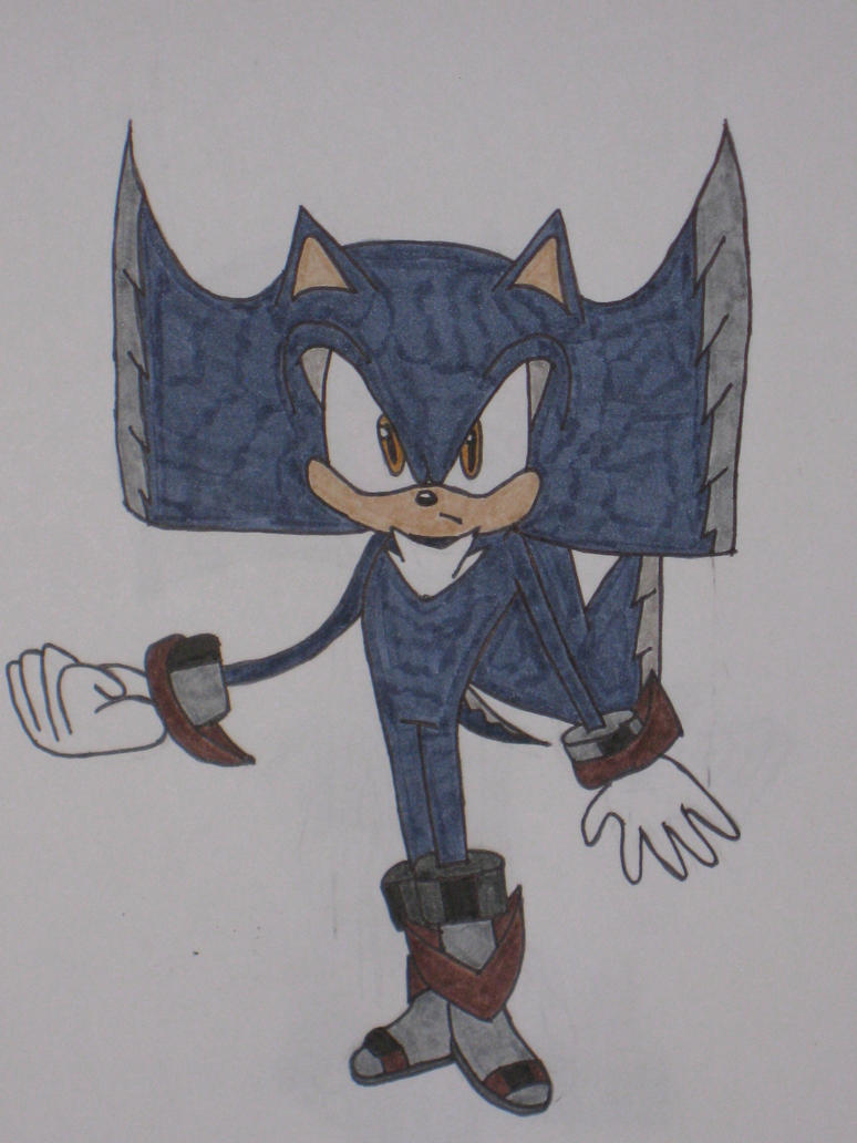 Borcues the Hedgehog by cat55