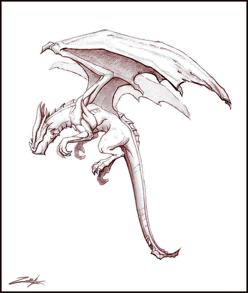 Dragon Sketch By Zoriy On DeviantArt