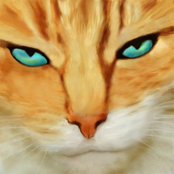 Feline Portrait by allison731