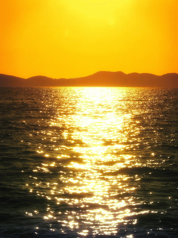 Zadar Island Day Trip