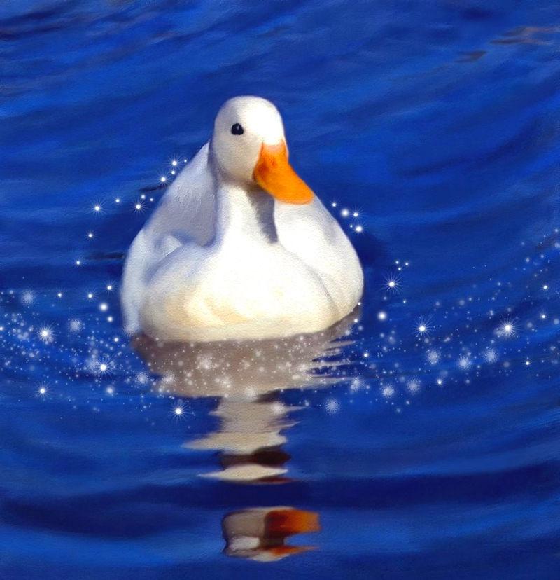 White Duck by allison731