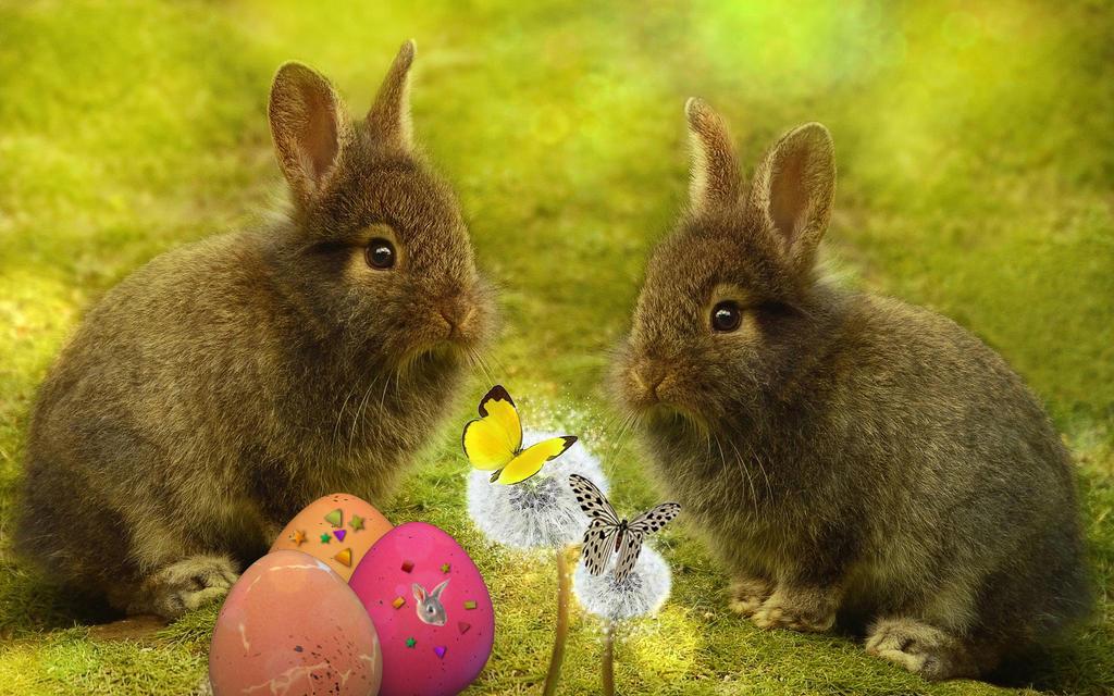 Easter Button Art Crafts