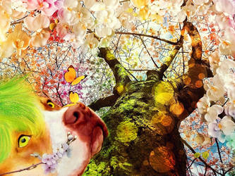 Spring Spirit by allison731