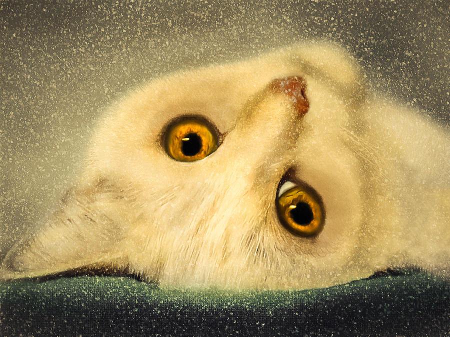 Golden Eyes by allison731