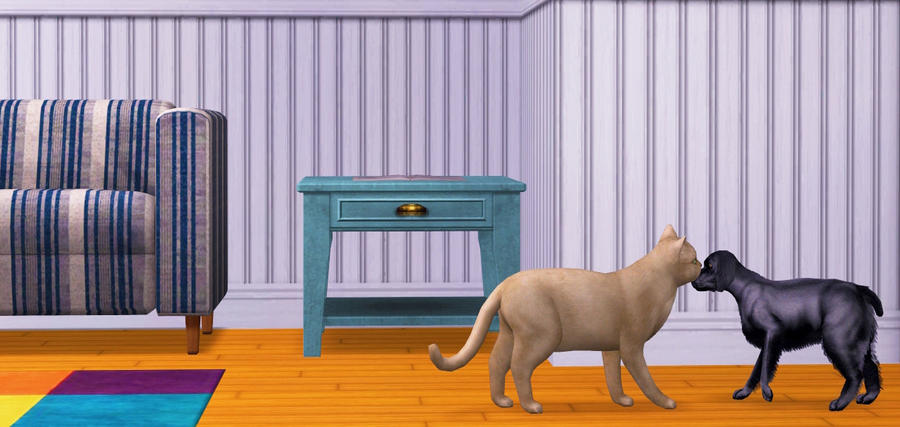 Pet Friendship by allison731