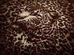 Leopard Pillow Case by allison731