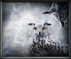 Owls-Art II by allison731