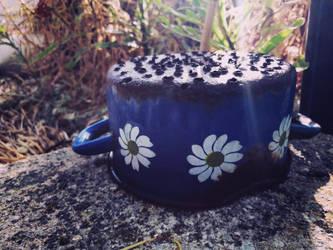 Old Blue Pot