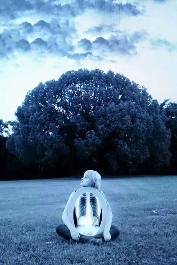 Beauty in Bones by midnight-storm666