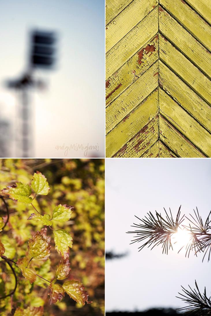 Autumn by Anelgim