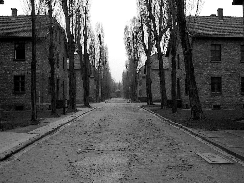 Auschwitz by necron