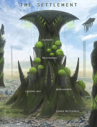 Map 6: The Settlement