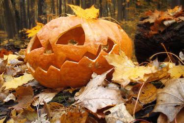 the autumn's pumpkin by harley-daniels