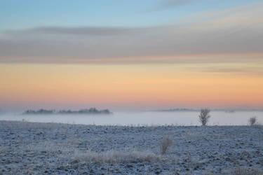 yesterday morning by harley-daniels