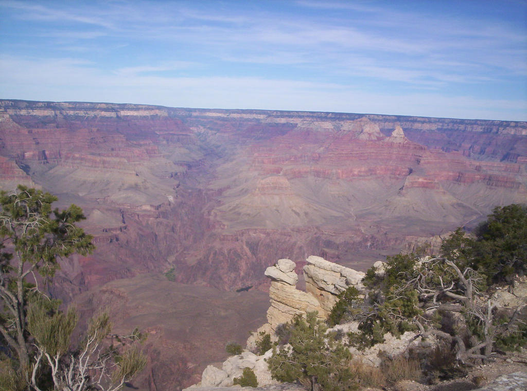 Grand Canyon by donna-j