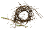 Nest_png