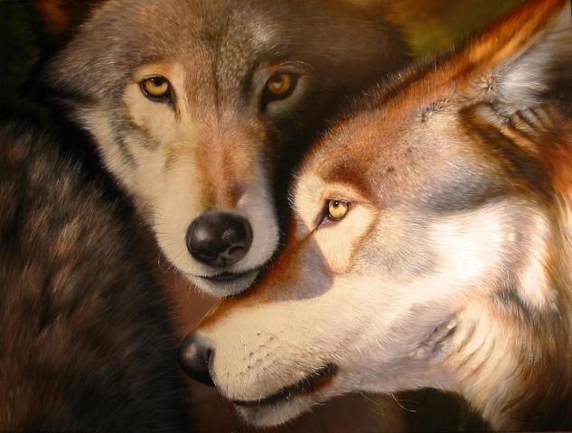 wolves by Raipun