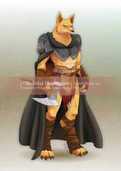 the_north_warrior_by_mokolat_illustr_ddr15eo-250t.jpg