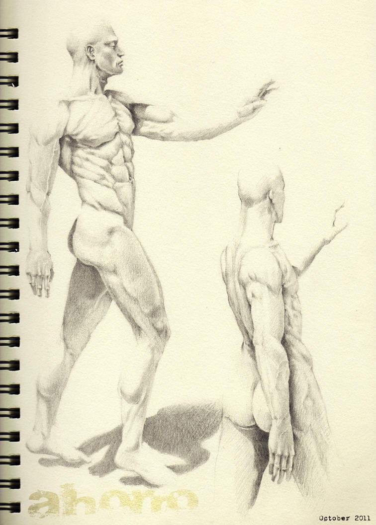 figure drawing practice by xanaduwinds on DeviantArt