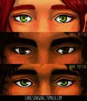 Potter's Eyes by anacaarol