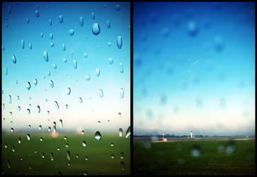 Morning drops. by cutofakiss