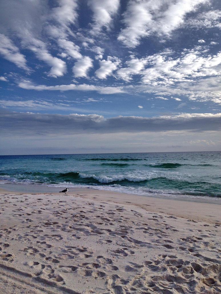 The beach life by cutofakiss