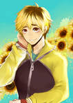 Sunflower Hideyoshi