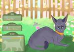 Jupiter / housecat / lc