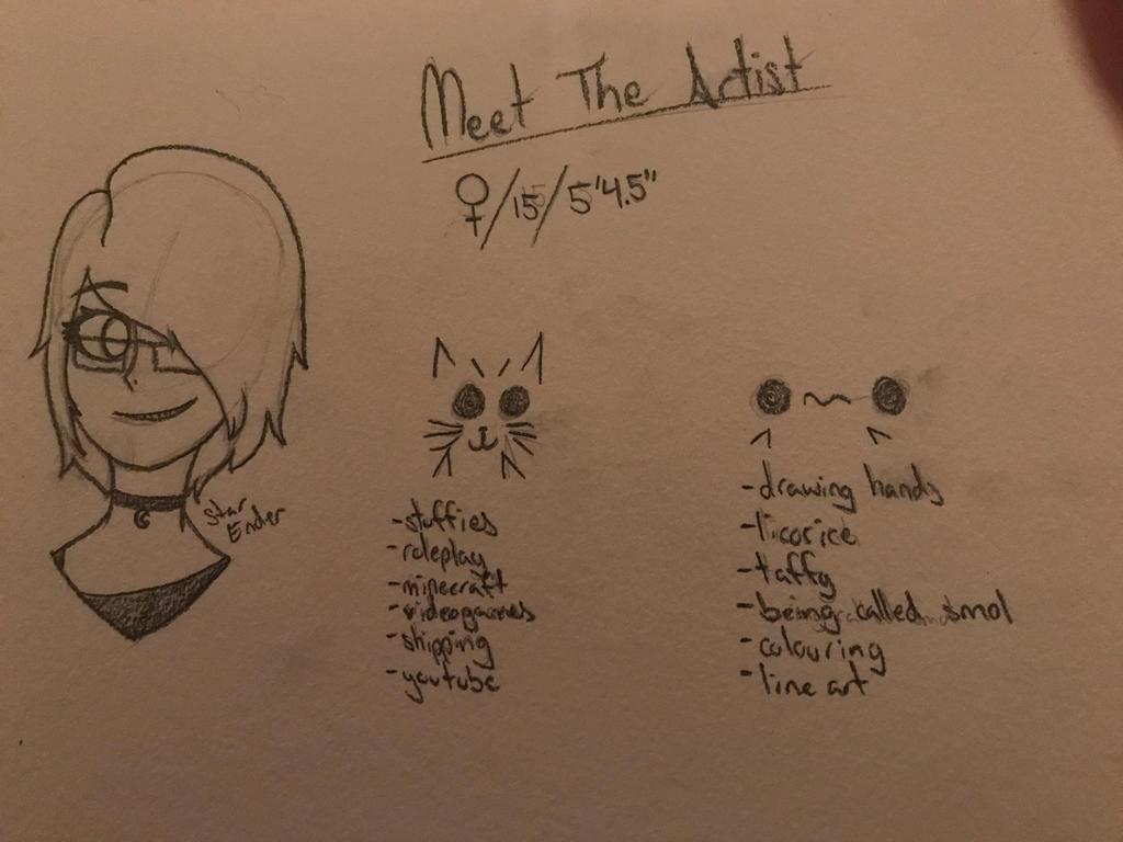 Meet The Artist by EndStar1