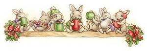 The Rabbit's Cocoa Break