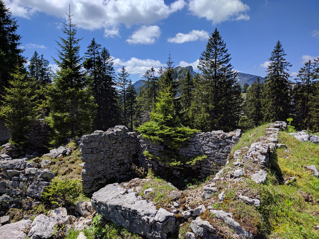 Alpine cabin remains by J-Felix
