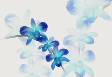 Blue Orchid Speedpaint by FreakorGeek