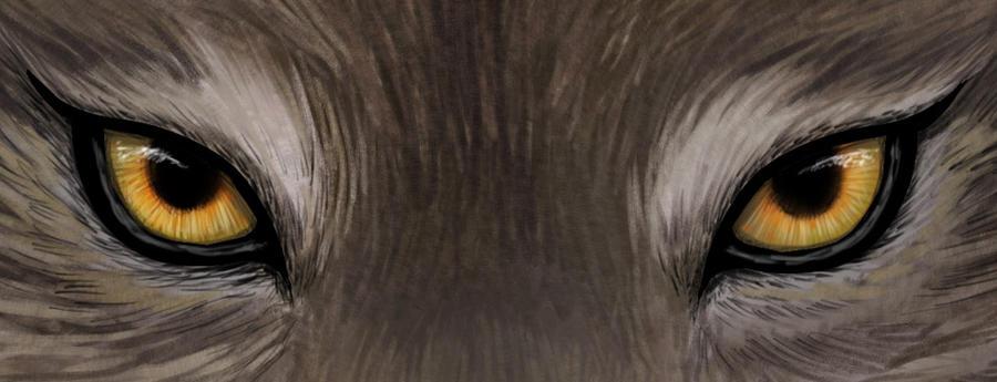 Wolf Eyes - Detail