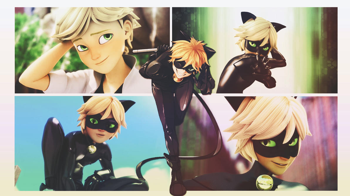 Cat Noir Wallpaper By Xenethis Chimera