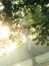 Solacing Sunrise by queenofwords