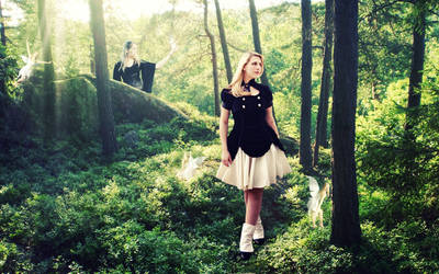 Forest of Wonder by queenofwords